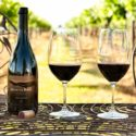 Hunter Valley Wine Tours Vineyard