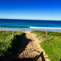 Northern Beaches Tours Palm Beach Path