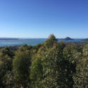 Port Stephens Tour from Sydney Gan Gan Lookout