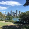 Sydney City Tour Botanical Gardens
